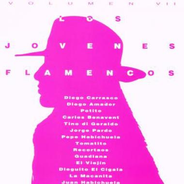 Los Jovenes Flamencos VII